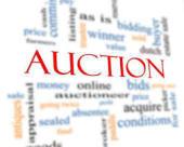 AWS-3 auction.jpg