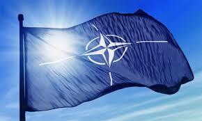 NATO702.jpg