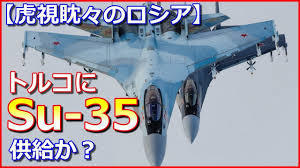 SU-35 5.jpg
