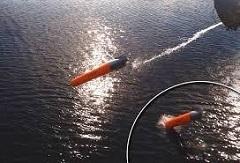 SeaSpider.jpg