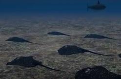 Tuekey sea2.jpg