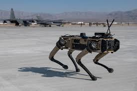 robot dogs.jpg